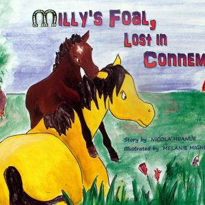 Milly's Foal Lost in Connemara